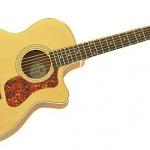 ギルドのギターの評価や音の特徴とは?
